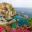 Manarola- beautiful village in Cinque terre, Liguria, Italy — Stock Photo #63992627