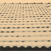 Snow on roof tiles — Stock Photo