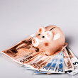 Pig bank on euro banknotes — Stock Photo #66900193