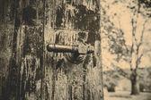 Staré kliku — Stock fotografie