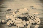 Mantar ve reçel — Stok fotoğraf