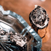 Expensive hand-rolled cigar on a while background — Стоковое фото