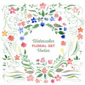 Floral set - vector watercolor illustration. Flowers, leaves, sw — Stock Vector