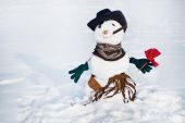 Snowmen with flower — Stock Photo