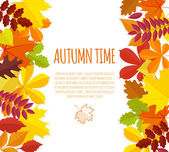 Banner with autumn foliage — Stock Vector