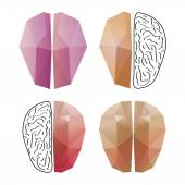 Abstract brain isolated on a white backgrounds — Stock Vector