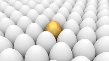 Golden egg — Stock Video