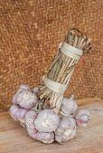Bunch of garlic — Stock Photo