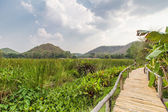 Bammboo bridge near reservoir with mountain and sky view — Stock Photo