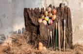 Colorfull easter egg — Stock Photo