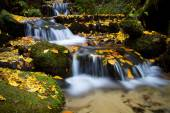 Autumn waterfall, Czech-Saxon Switzerland — Stock Photo