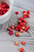 Wild strawberries — Stock Photo