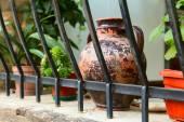 Pot balcony flowerpot — Stock Photo