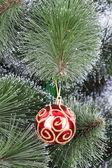 Christmas ball pine tree branch — Stock Photo