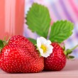 Strawberries with  napkin on background — Stock Photo #65671405