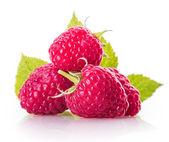 Delicious fresh raspberries — Stock Photo