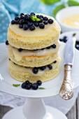 Lemon blueberry layer cake — Stock Photo