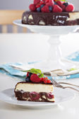 Cheesecake with berries on a brownie layer — Stock Photo