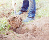 Closeup photo of man digging soil at garden — Stock Photo