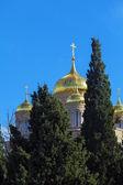 Orthodox Gorny convent, Ein Kerem, Jerusalem — Stockfoto