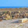 Ancient Mosaics in the Archaeological Site, Paphos, Cyprus — Stock Photo #55150769
