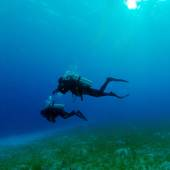 Silhouette of Two Divers near Sea Bottom  — Stock Photo