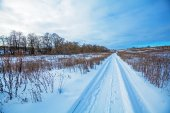 Snowy Road and Snow Covered Field — Stock Photo