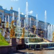 Grand Cascade Fountains At Peterhof Palace — Stock Photo #65835291