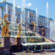 Grand Cascade Fountains At Peterhof Palace — Stock Photo #65835327
