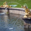 Grand Cascade Fountains At Peterhof Palace — Stock Photo #65835417