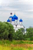 Holy Bogolyubovo Monastery with Cathedral of the Bogolyubskaya I — Stock Photo