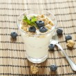 Delicious healthy breakfast, yogurt with cereal and blueberries — Stock Photo #56329187