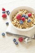 Healthy Breakfast with muesli cereal and wild fresh berries — Stock Photo