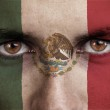 Mexico, maxican flag painted on the face of young man — Stock Photo #56330201
