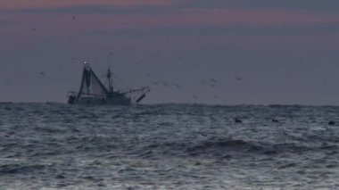 Commercial Fishing Boat — Stock Video