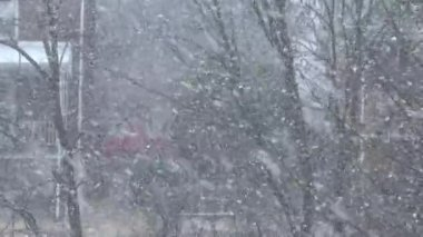 Schnee in einer westlichen pennsylvania-nachbarschaft — Stockvideo