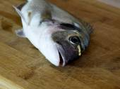 Fresh sea bream fish on wooden board — Stock Photo