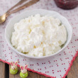 Cottage Cheese (Quark, Cream Cheese, Curd) in a White Bowl — Stock Photo #55314677