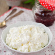 Cottage Cheese (Quark, Cream Cheese, Curd) in a White Bowl — Stock Photo #61483287