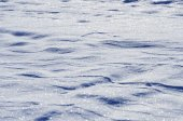 Snow at night — Stock Photo