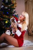 Pretty Christmas woman with Yorkshire terrier near Christmas tre — ストック写真