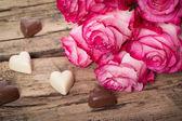 Fresh pink roses on white — Stock Photo