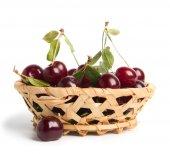 вишни — Стоковое фото