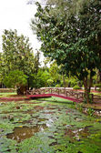 Taman Rekreasi Tasik Melati, Perlis, Malaysia — Zdjęcie stockowe