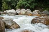 Naturally undeveloped river in Bentong, Pahang, Malaysia — Stock Photo