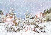 Vinter. snöfall. — Stockfoto