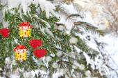 Spruce decorated gifts — 图库照片