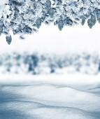 Fondo abstracto de invierno — Foto de Stock