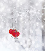 Winter Forest. heart — Stock Photo