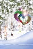 Winter Landscape. Winter Forest. heart — Stock Photo
